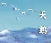 天鵝( Hakuchou)