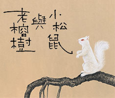 小松鼠與老榕樹( White squirrel and the old banyan tree)