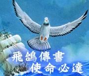 勇12──戰鴿的故事書本封面