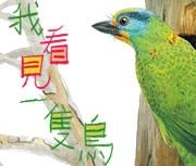 我看見一隻鳥書本封面