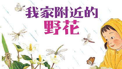 107年7月主題閱讀區《我家附近的野花》導讀動畫上架囉!