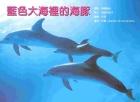 藍色大海裡的海豚