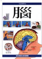 腦( Understanding your Brain)封面圖