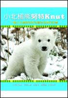 小北極熊努特