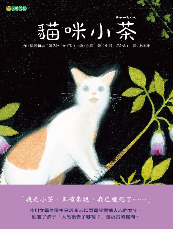 貓咪小茶( チャーちゃん)封面圖