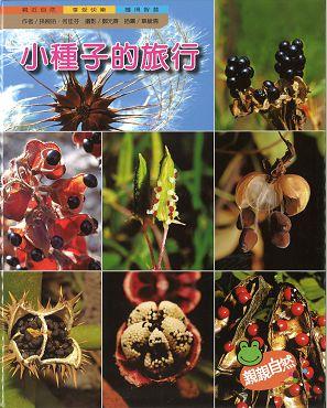 小種子的旅行封面圖