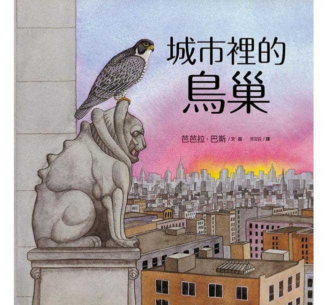 城市裡的鳥巢:鳥兒們「窩」在哪裡?