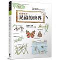 繪圖解說 昆蟲的世界( 絵でわかる昆虫の世界 進化と生態)封面圖