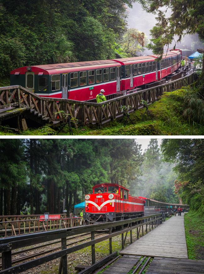著名的登山鐵路──阿里山森林鐵路