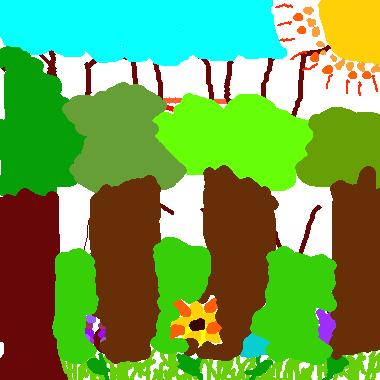 美麗的森林