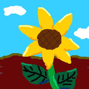 晴天裡的大太陽