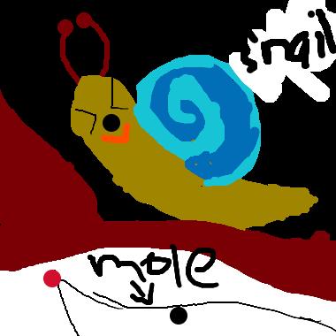 蝸牛去地鼠