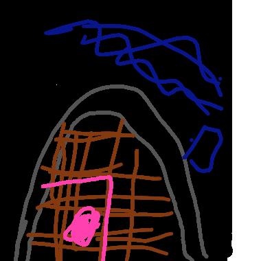 林森裏的山洞