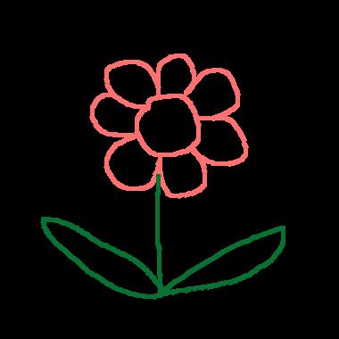 美麗的花朵