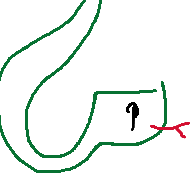 Slither Snake