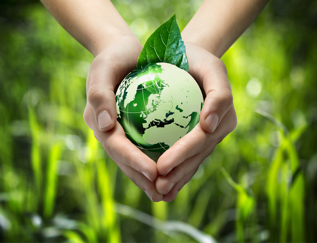 文化小學堂-全新專題「保護地球愛環保」上架囉!相關圖片